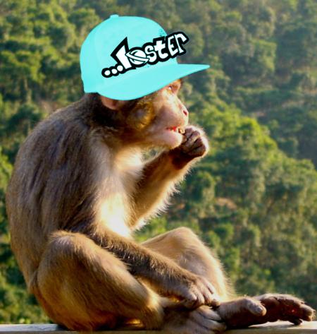 fletcher's monkey w lost hat