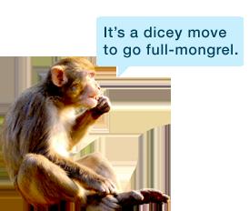 Monkey_speaking bubble hazza